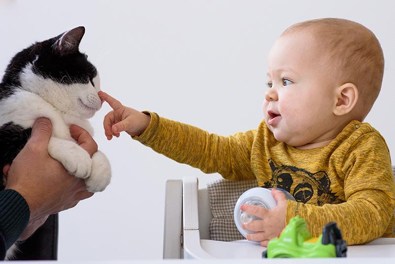 baby met kat